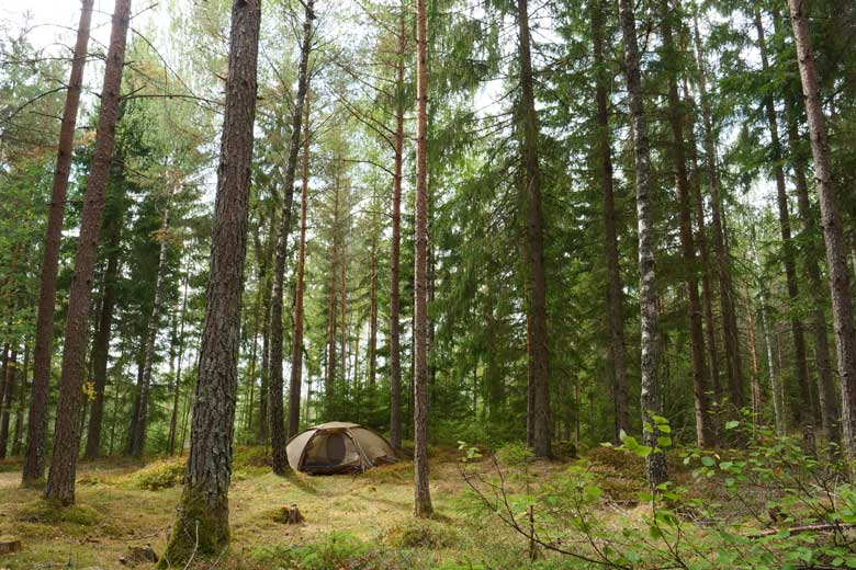 The green colour off the Fjällräven Abisko Dome 2 blends in perfect with nature.